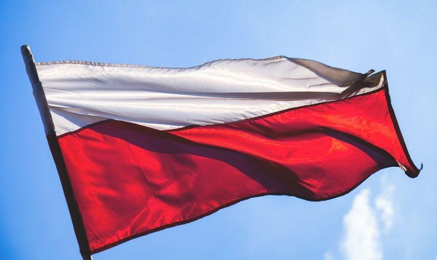 Polska jak inteligentny, przystojny, silny facet z klasą